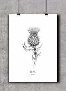 Poster distel, BDDesigns 2