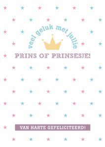 A4 baby kaart prins of prinsesje 2