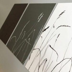 Kaart grassen in wit-grijs-bruin, Marieke ten Berge 1