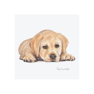 Minikaartje labrador, Ingrid van der Krol 1