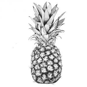Poster ananas A3 Minimel