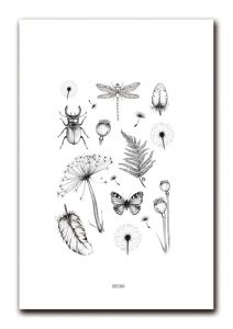 A4 poster botanical BDDesigns 2
