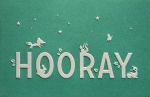 Wenskaart 'Hooray' mintgroen ambachtelijk gedrukt in Letterpers 2
