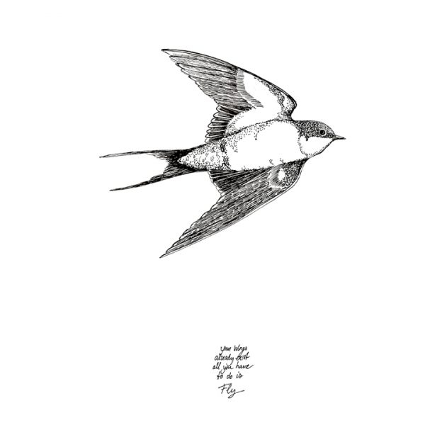 "Kaart zwaluw ""fly"", Marieke ten Berge"