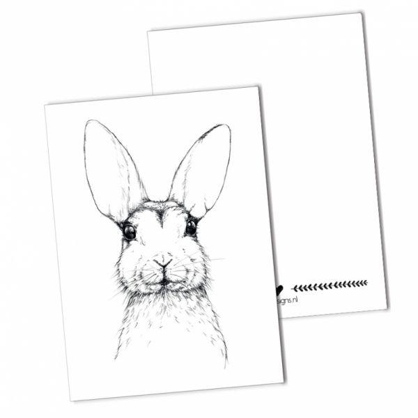 (Paas) haas kaart, BDDesigns