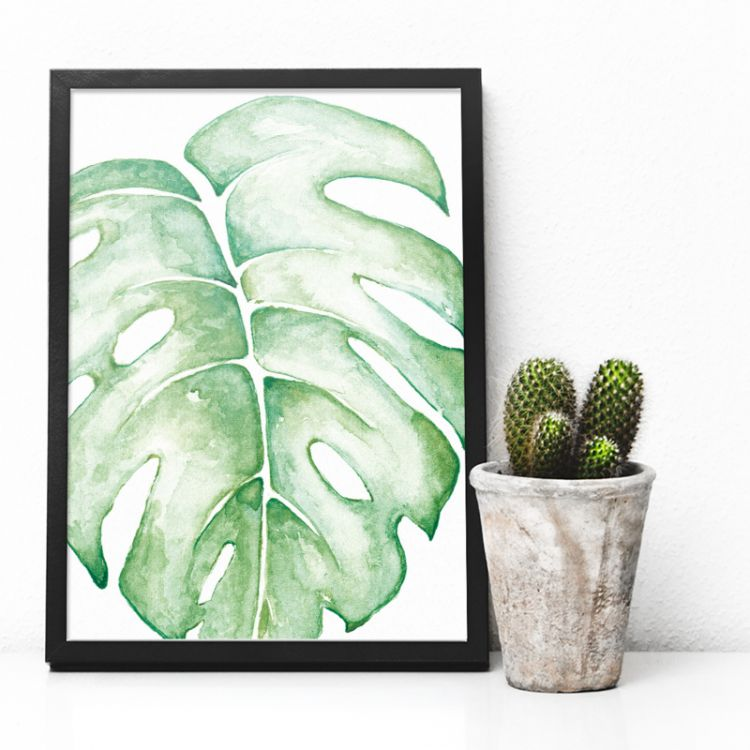A5 poster monstera kleur, BDDesigns