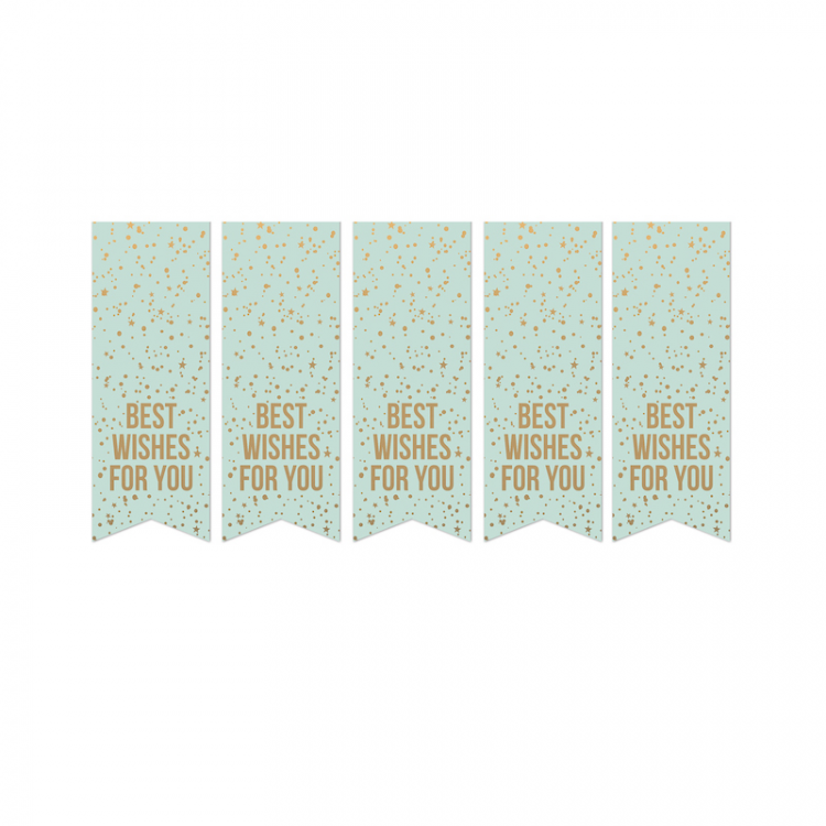 Cadeausticker mint met goud 'Best wishes for you'