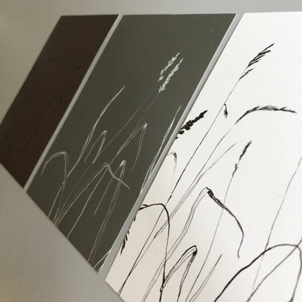 Kaart grassen in wit-grijs-bruin, Marieke ten Berge