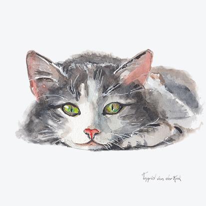 Minikaartje kat, Ingrid van der Krol