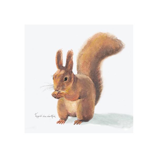 Minikaartje eekhoorn, Ingrid van der Krol