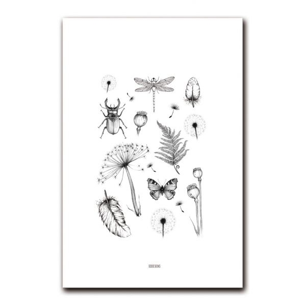 A4 poster botanical BDDesigns